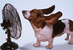 Air-conditioning-fan
