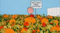 141028093721-great-pumpkin-patch-1024x576