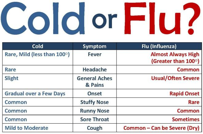 cold-or-flu2