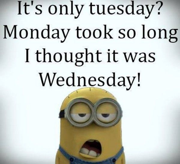 wp 1491313189186 it's only tuesday? the tony burgess blog