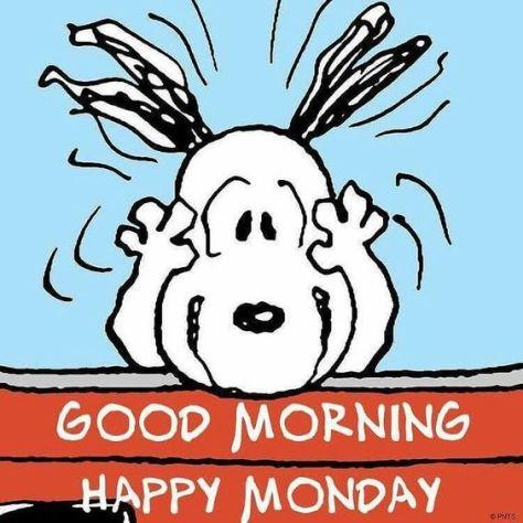 20-Happy-Monday-Memes