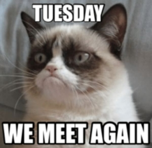 cool-tuesday-meme-images